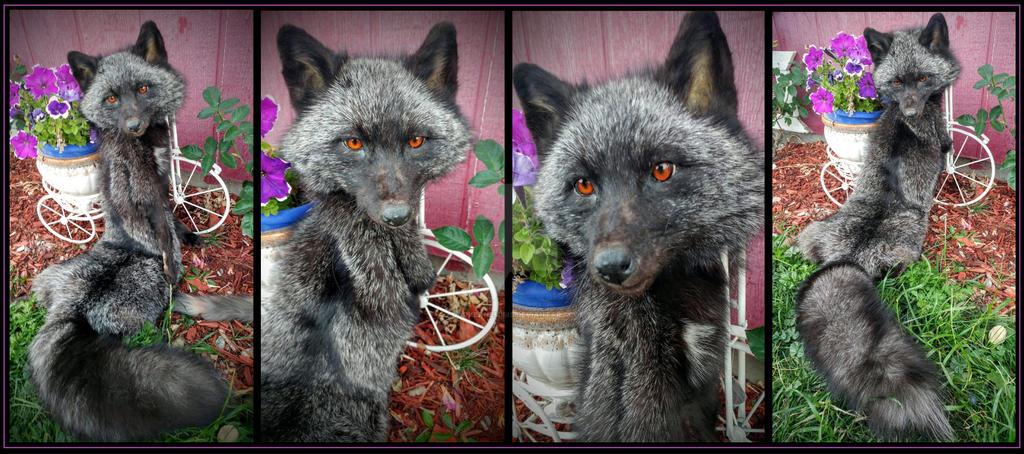 Spooky Silver by AdarkerNEMISIS
