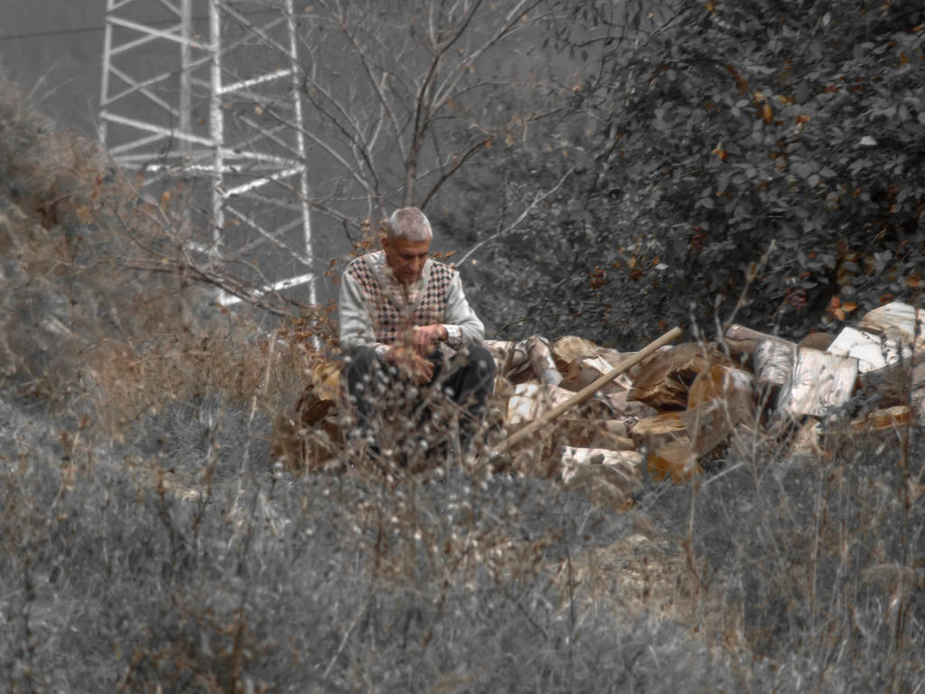 rest while chopping wood by Bliznaka