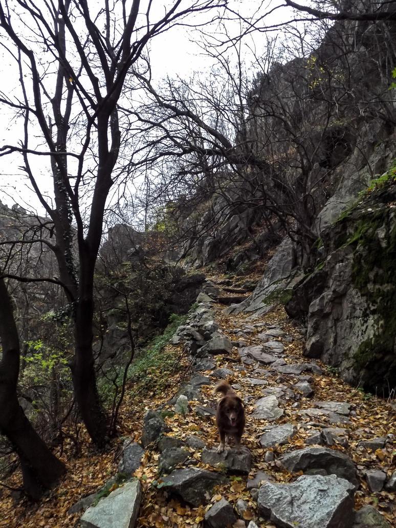 23.11.14 (16) by Bliznaka