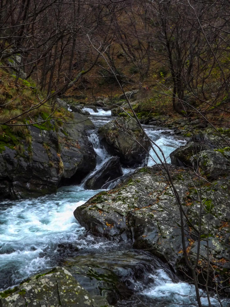 23.11.14 (19) by Bliznaka