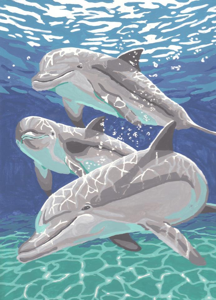 Dolphin by RheaofWar