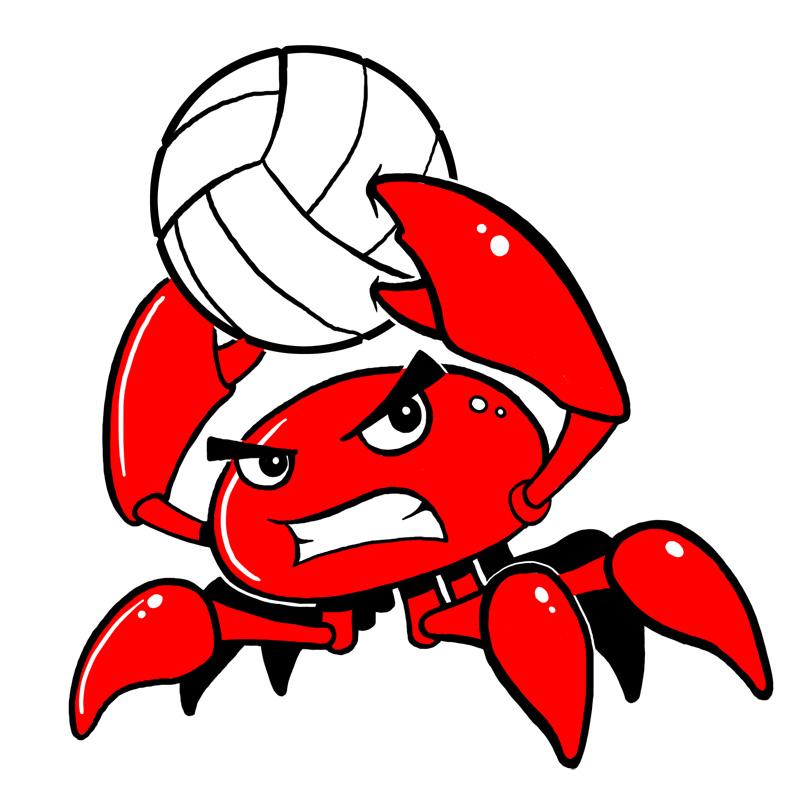 Volleyball team logo