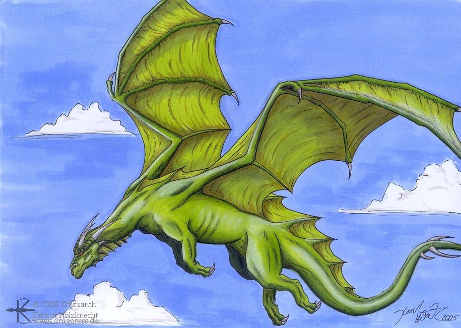 AVATAR POUR TOUS Green_Dragon_by_Khyrsanth
