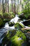 Falls along the Boulder Brook Trail