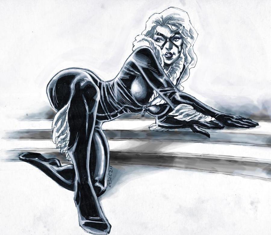DSC - Black Cat by dichiara