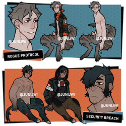 [ADOPT] rogue protocol / security breach [closed]