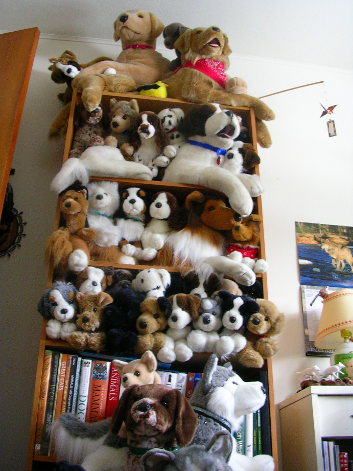 DeviantArt: More Collections Like Wild republic cuddlekins husky ...