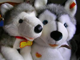Sascha And Kody