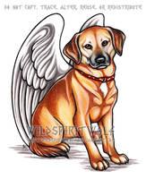 Angel Annie by WildSpiritWolf