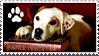 Wishbone And Books Stamp