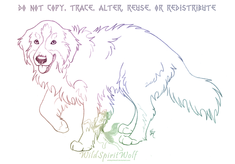 Bernese Mountain Dog Coloring Pages For Kids