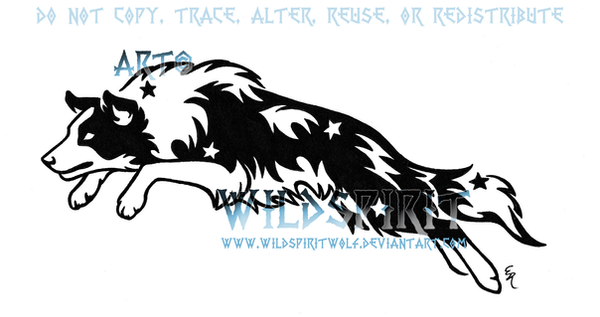 Starry Leaping Border Collie by WildSpiritWolf