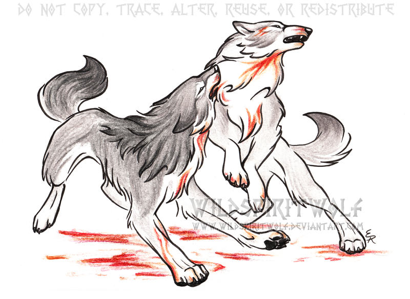Wolf Fight - Old by WildSpiritWolfFighting Wolf Drawings