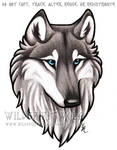 Blue Eyed Grey Wolf Bust Commission