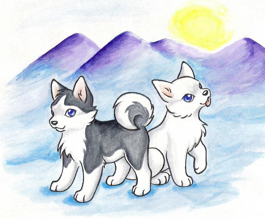 Cute Arctic Wolf Drawing Www Pixshark Com Images