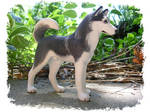 Proud Husky Sculpture
