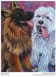 Leia German Shepherd + Riley Sheepdog - Painting