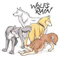 Wolf's Rain Strikes Again by WildSpiritWolf