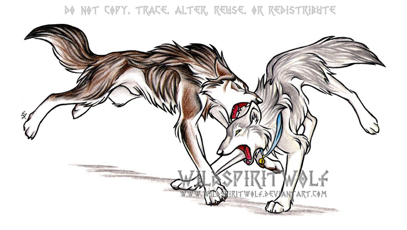 Wolf Fight Kimaria Com...