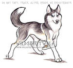 Trotting Husky Dog Commission