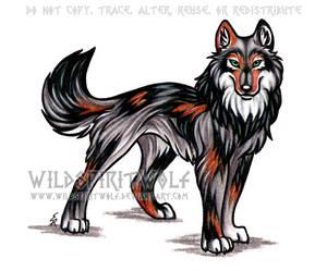 K.C. Wolf