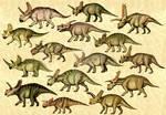 Ceratopsians 2