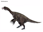 Suzhousaurus