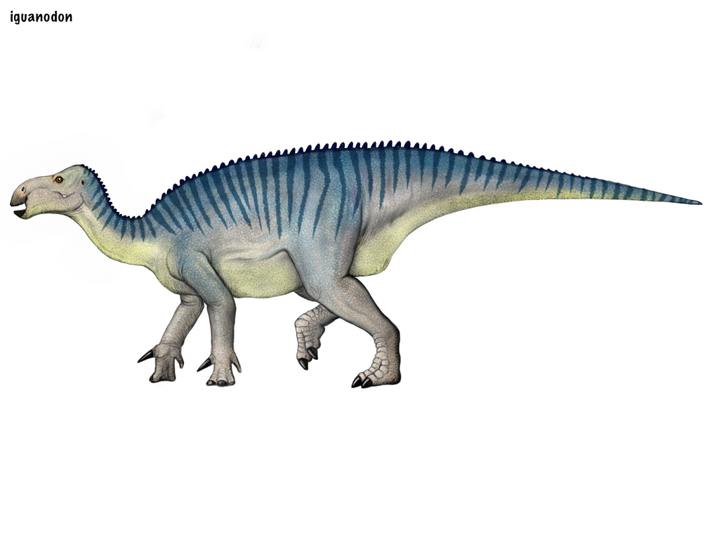 Iguanodon By Cisiopurple On Deviantart