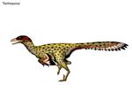 Tochisaurus