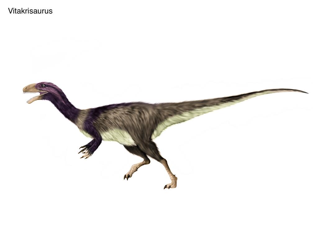 Resultado de imagen de vitakrisaurus