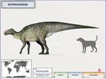 Eotrachodon