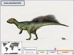 Hualianceratops