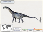 Mierasaurus