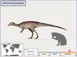 Notohypsilophodon