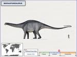 Maraapunisaurus