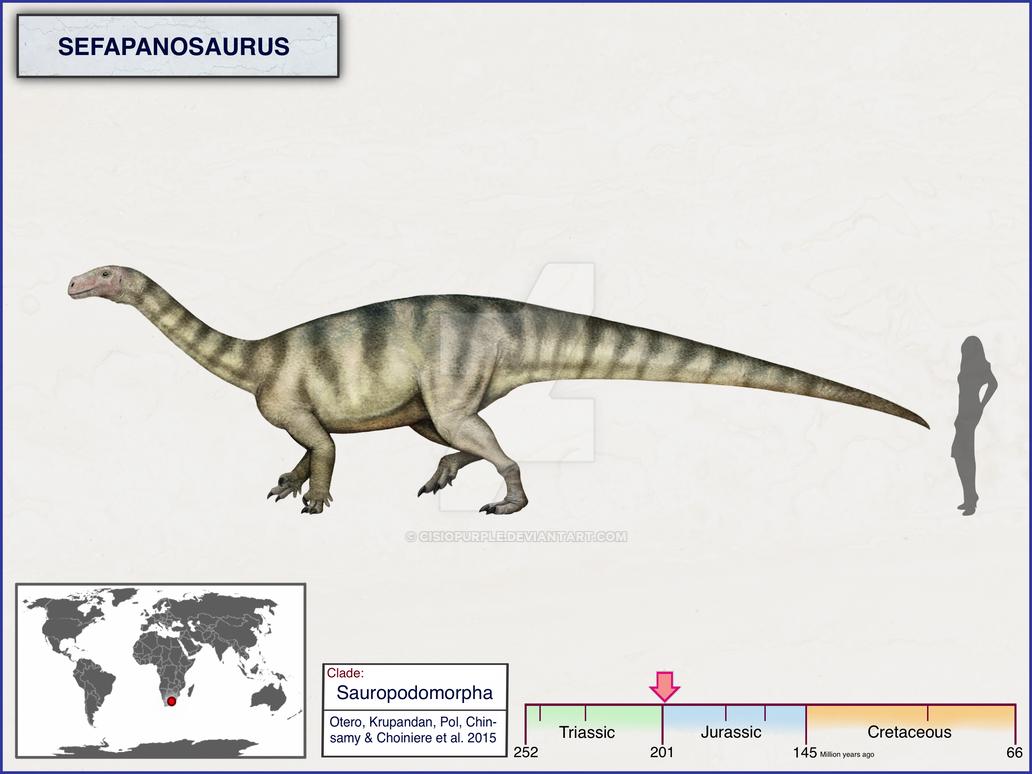 Sefapanosaurus by cisiopurple