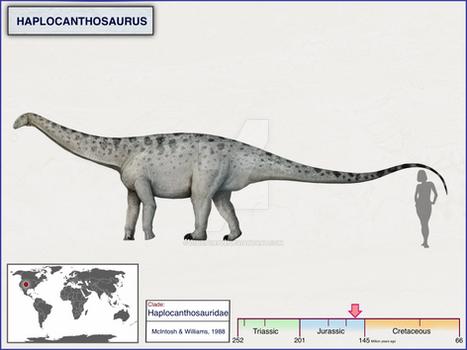 Haplocanthosaurus