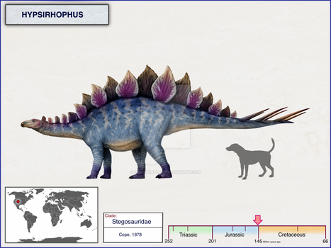 Hypsirhophus