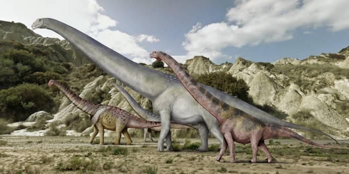Grazing titanosaurs