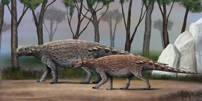 Kunbarra and kunbarrino