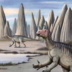 Iguanodon-finger rocks