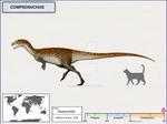 Compsosuchus