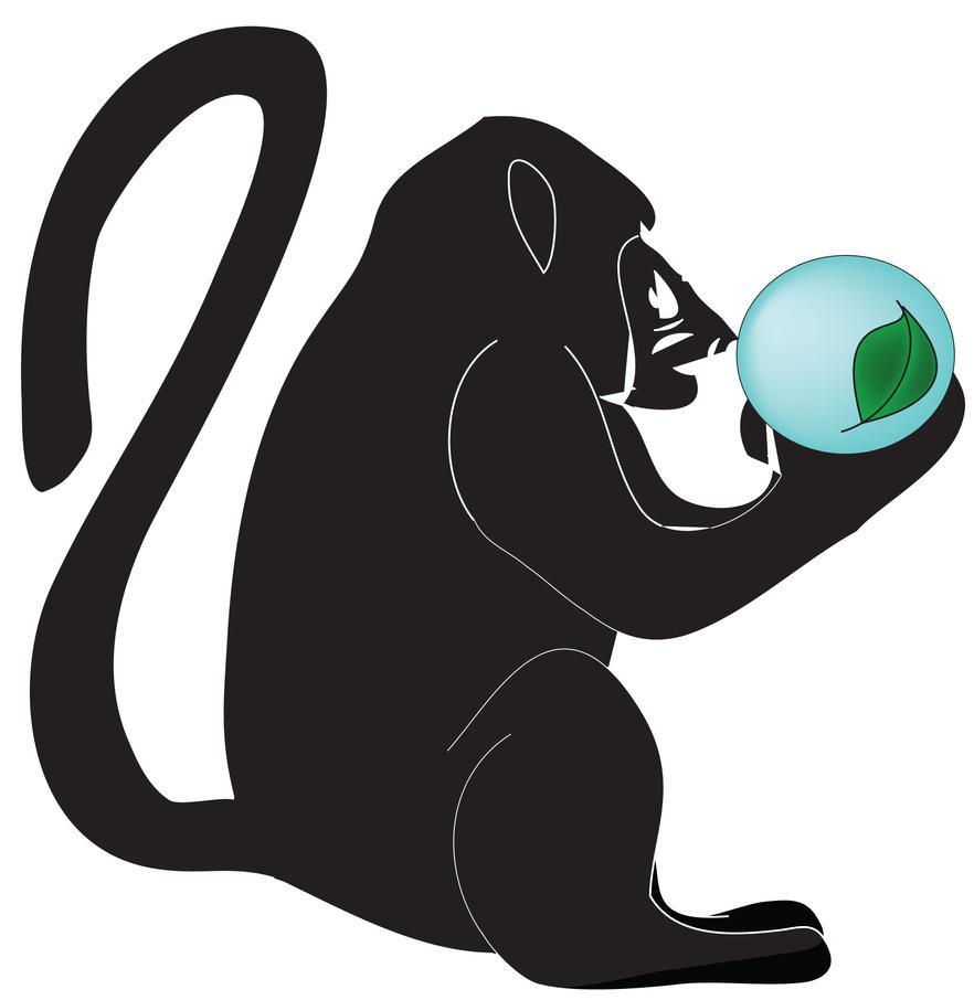 Monkey by Takama