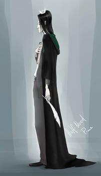 The Half-Blood Prince