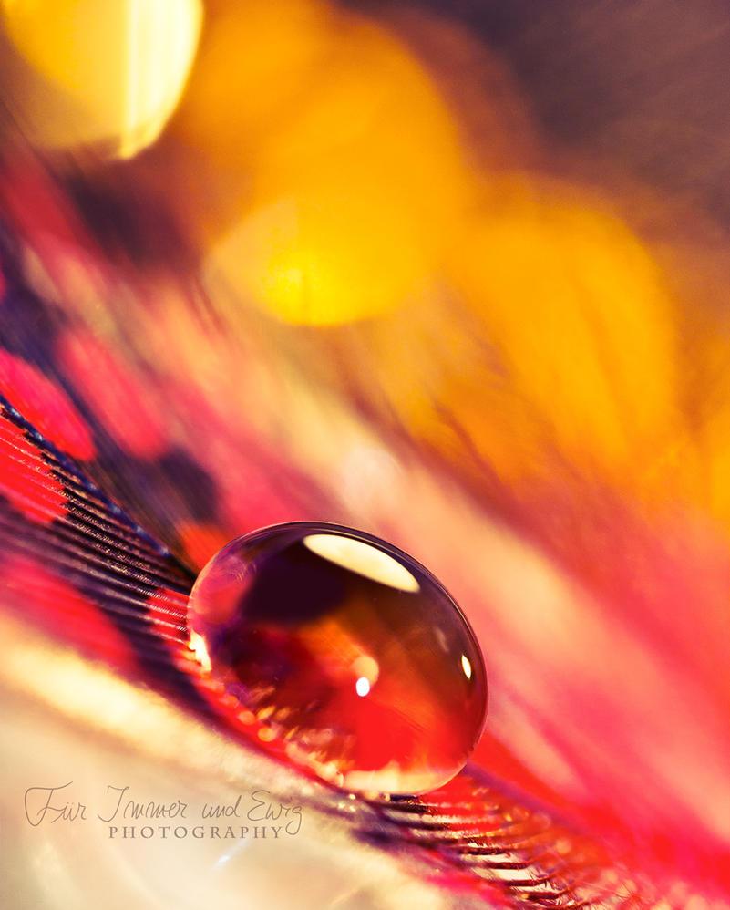 Glasseye by FurImmerUndEwig