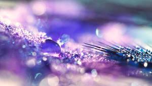 Sparkly Drop by FurImmerUndEwig