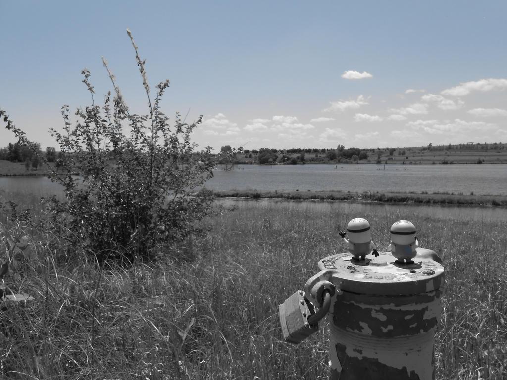 Minions on the prairie by i8magic