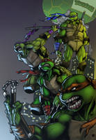 Turtles - colored by halwilliams