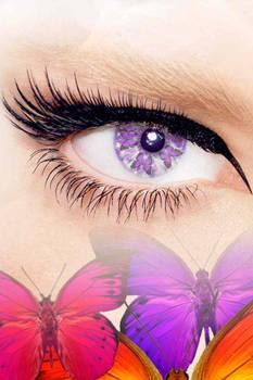 Purple butterflies eyes