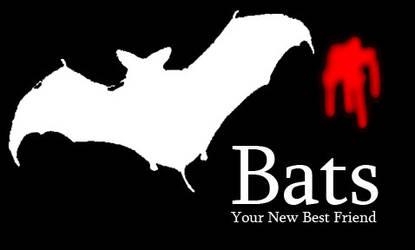Bats, your friend